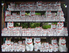 Lucky cats at Gotokuji temple